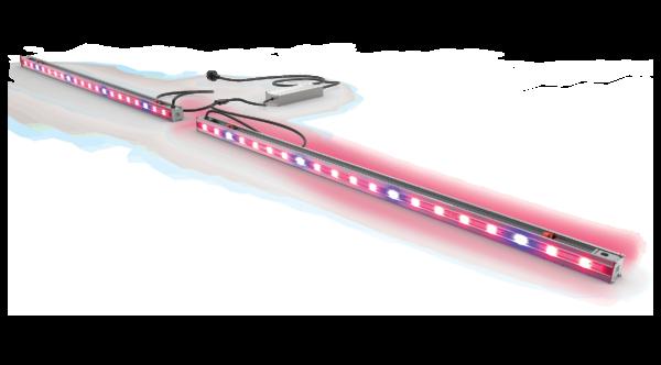 DIODE Interlight TRANSP3 Lights On