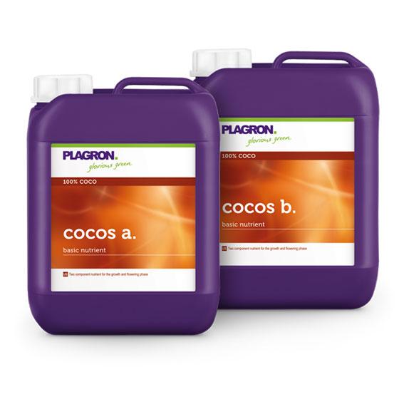 cocos-A&B_567x567px